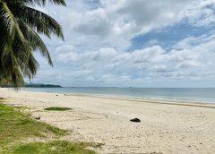 เที่ยวทั่วไทยไปกับพี่หนุ่ม'สุทน รุ่งธัญรัตน์ : ท่องเที่ยวหาดทรายธรรมชาติสวยงามใน 6 จุด หาดทุ่งวัวแล่น อำเภอปะทิว จังหวัดชุมพร